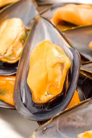 galicia: macro making natural mussels from Galicia, in tray