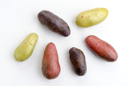 overhead shot of group of colorful potatoes isolated on white