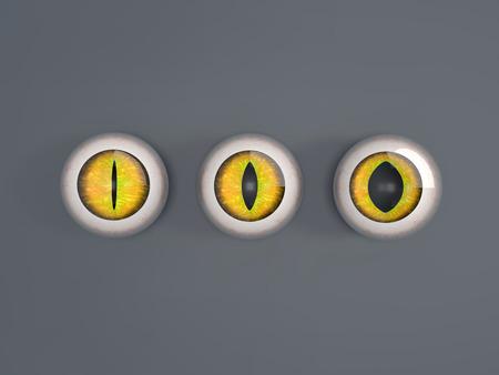 cat's eye glasses: Illustration of 3d render cat eyeballs