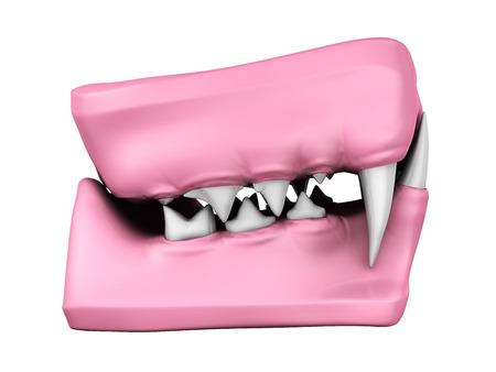 mould: 3d model of cat teeth cast. Side view.