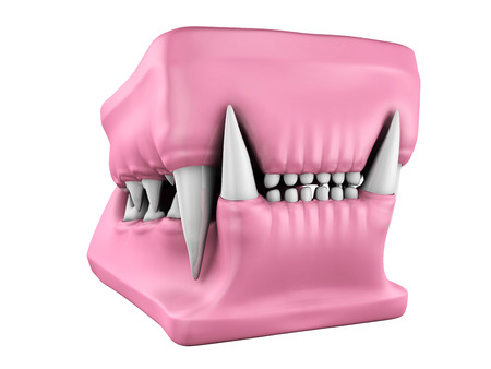 mould: 3d model of cat teeth cast on the white background. Stock Photo
