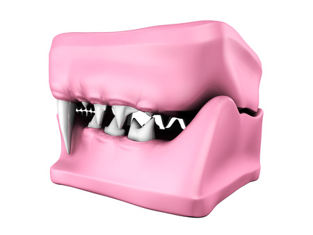 mould: 3d model of cat teeth cast. Back side view.
