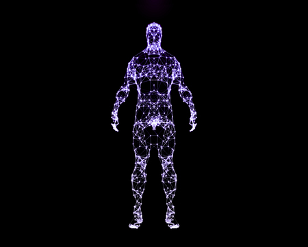 Abstract digital illustration of human body. Front view.