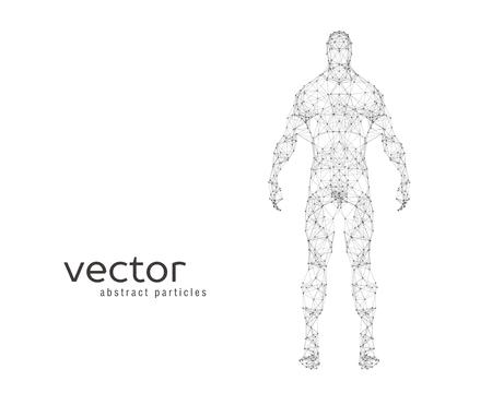 白い背景の上の人間の体の抽象的なベクトル イラスト