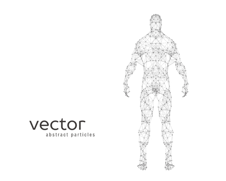 Abstract vector illustration of human body on white background Illusztráció