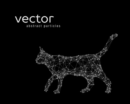 catlike: Abstract vector illustration of cat on black background