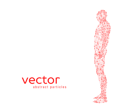 stranger: Abstract vector illustration of human body on white background. Side view.