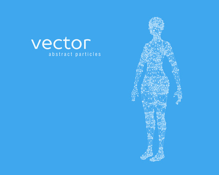 Abstract vector illustration of female body on blue background. Perspective front view. Illustration