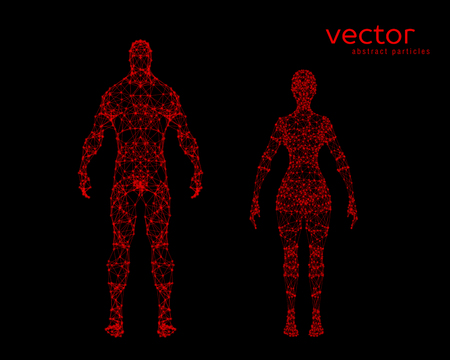 stranger: Abstract vector illustration of male and female body on black background. Illustration