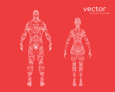 cyber woman: Abstract vector illustration of male and female body on red background. Illustration