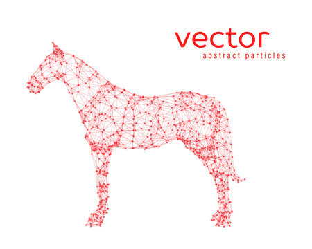 Abstract vector illustration of horse on white background