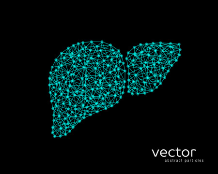 Abstract vector illustration of human liver on black background.