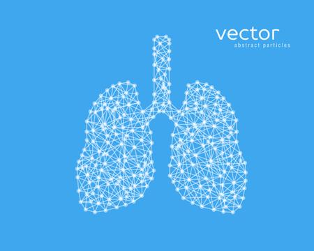 Abstrakte Vektorillustration von menschlichen Lungen auf blauem Hintergrund. Standard-Bild - 71028000