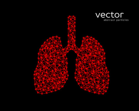 alveolos: Resumen ilustración vectorial de los pulmones humanos sobre fondo negro.