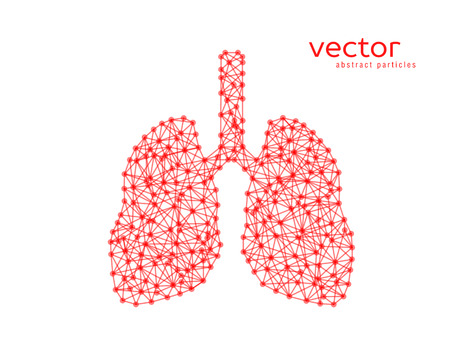 Abstract vector illustration of human lungs on white background.
