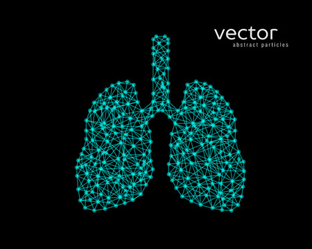 Abstract vector illustration of human lungs on black background.