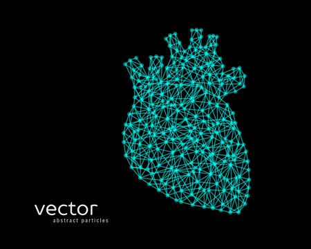Abstract vector illustration of human heart.