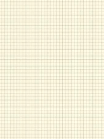 margin: Blank plotting paper on a white background