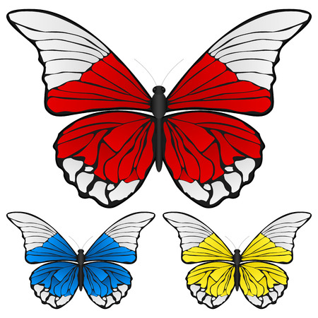 Butterfly set isolated on white background, Vector illustration. Stock Vector - 8148587