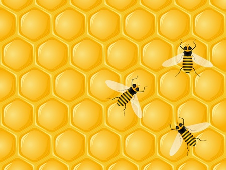 Honeycomb and bees background. Vector illustration. Vector
