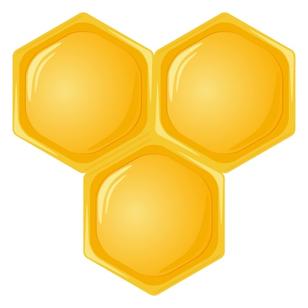 hives: Honeycomb isolated on a white background. Vector illustration. Illustration