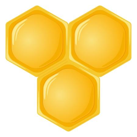 hive: Nido de abeja aislado en un fondo blanco. Ilustraci�n vectorial. Vectores