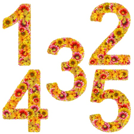 Numbers 1-5 created of flowers isolated on white background. photo