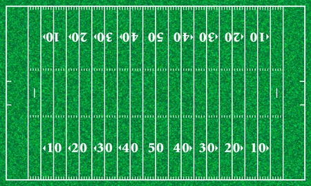 football pitch: American football field with grass texture. Vector illustration.