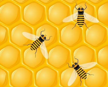 hive: Fondo nido de abeja y las abejas. Ilustraci�n vectorial.