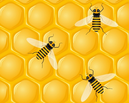 hives: Honeycomb and bees background. Vector illustration.