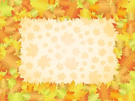 autumn leaf frame: Hoja de oto�o marco de fondo. Ilustraci�n vectorial.
