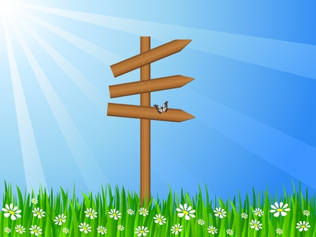 wooden post: Wooden  sign post on a grassy field  Vector illustration