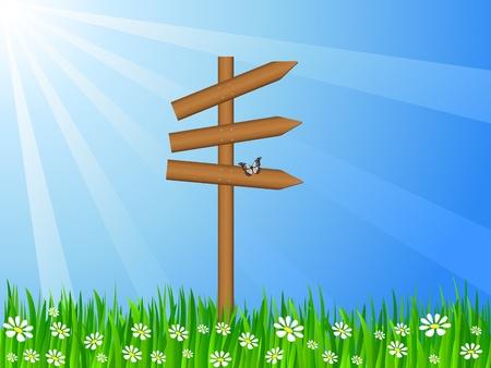 grassy field: Wooden  sign post on a grassy field  Vector illustration