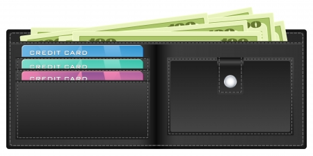 billfold: Open wallet with banknotes and credit cards illustration