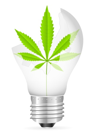 Broken light bulb with marijuana leaf on a white background. Vector illustration.