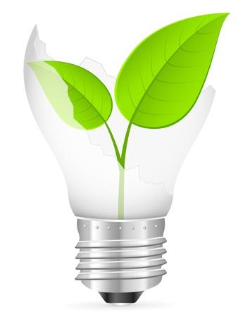 Broken light bulb with leaf on a white background. Vector illustration. Reklamní fotografie - 16434249