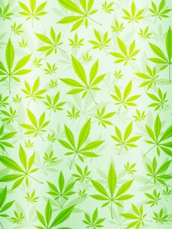 Green marijuana leafs background   Vector