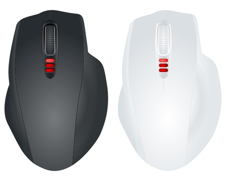 Computer mouse isolated on a white background. Vector