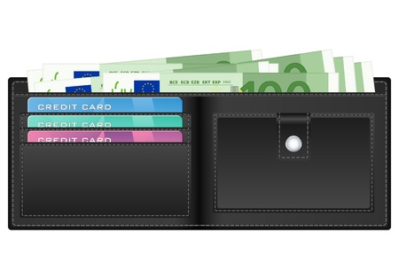 billfold: Open wallet with euro banknotes and credit cards.  illustration..