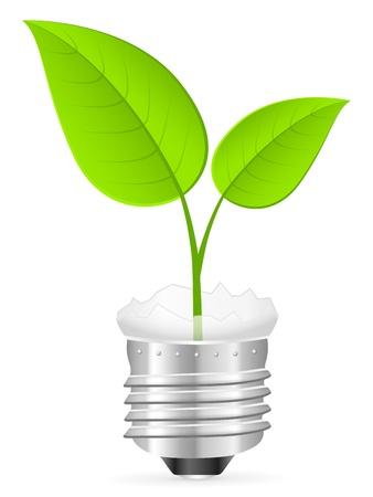 wolfram: Broken light bulb with leaf on a white background. Vector illustration.
