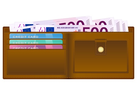 billfold: Open wallet with euro banknotes and credit cards  Illustration