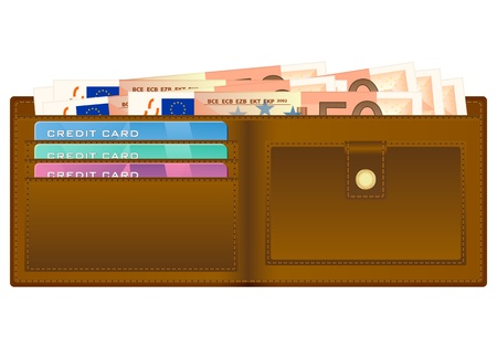 billfold: Open wallet with fifty euro banknotes and credit cards. illustration. Illustration