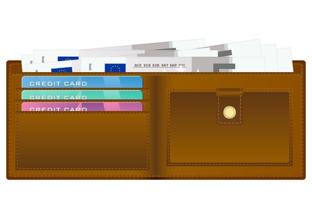 billfold: Open wallet with five euro banknotes and credit cards. Vector illustration. Illustration