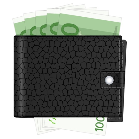 billfold: Wallet with euro banknotes and credit cards. Vector illustration.