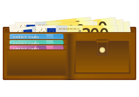 Open wallet with euro banknotes and credit cards. Vector illustration. Stock Vector - 22779756