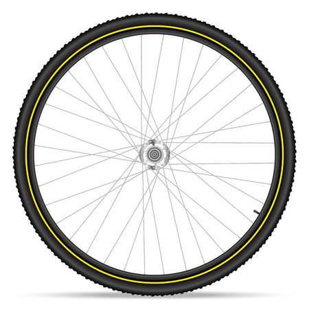 bicycle wheel: Mountain bike wheel on a white background.
