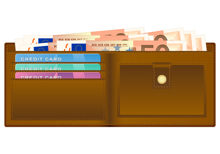 billfold: Open wallet with fifty euro banknotes and credit cards. Vector illustration.