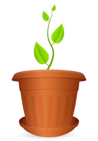 crock: Flowerpot plant on a white background. Vector illustration. Illustration