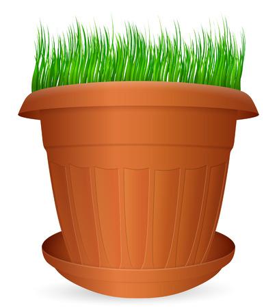 crock: Flowerpot grass on a white background. Vector illustration.