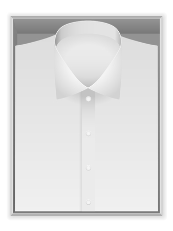pasteboard: Shirt in box on a white background.
